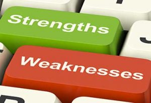 business strengths
